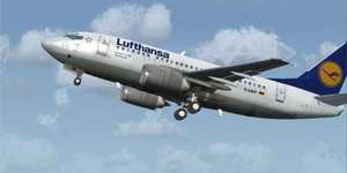 FS2004 - Wilco 737 PIC MORE LIVERIES Full .rar Pc Serial Software License X64