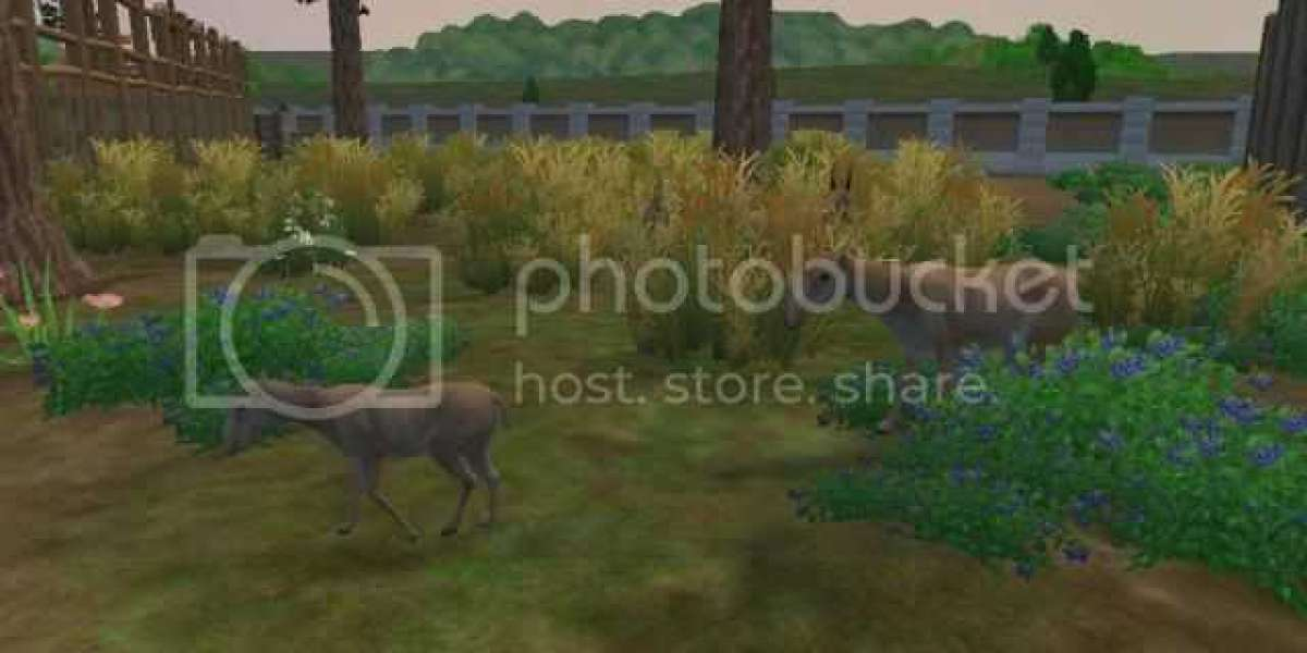 Zoo Tycoon 2 European Exp X64 Rar Pro Crack